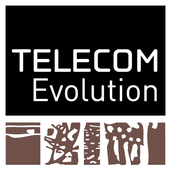 Telecom_evolution_Web